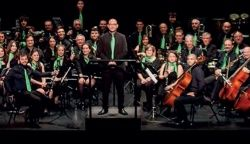 Auditorio: XVII Festival de Bandas Maestro Guillén