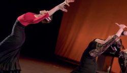 Auditorio: Entre copla y copla